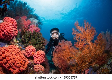 Diver surrounding by organge huge seafan in Raja Ampat