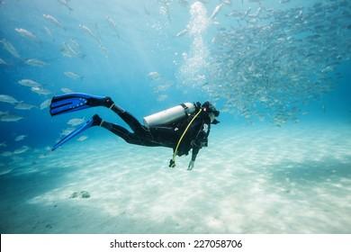 diver swimming in fish school in Dimakya island, Palawan, Philippines.