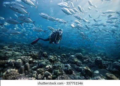 diver underwater