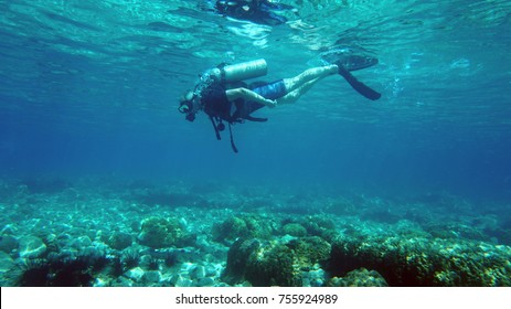 diver underwater. diving. water sports