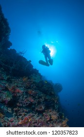diver underwater on a healthy reef