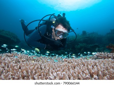 Diver,coral and fish, Raja Ampat. Indonesia.