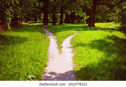Divergence of paths in the park