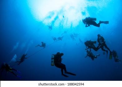 Divers descending on a descent line.
