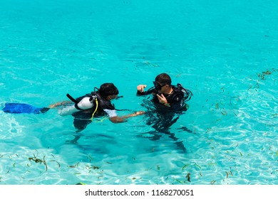 Divers learning in shallow blue water in the Maldives