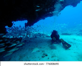 divers near a wall, fuerteventura , canary islands