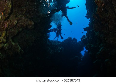Divers on the reaf of Red sea