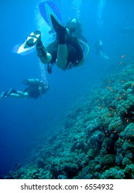 Divers over reef