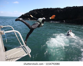 Divers perform a sea clean up