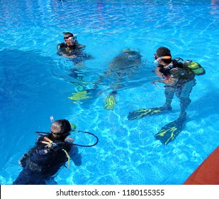 Divers in a pool. Diving class in a swimming pool