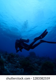 Divers Scuba dive in Rabaul , East New britain