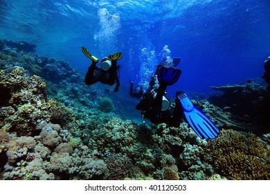 divers underwater the sea