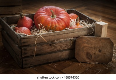Diverse assortment of pumpkins in a wooden chest. Autumn harvest. Wooden board with a copy space. Place for text. Wooden background. Hokkaido and french pumpkin.