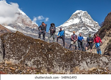 Diverse Group of Hikers male and female young and mature staying on Rock holding Backpacks and walking Sticks Mountain Valley and high snowy Peaks on Background
