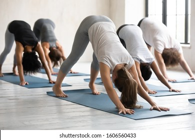 Diverse young women wearing sportswear doing Downward facing dog exercise, practicing yoga at group lesson, standing in adho mukha svanasana pose on mats, working out in modern yoga studio