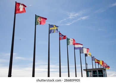 Diversity of flags