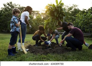 Diversity of People Planting Tree Unity