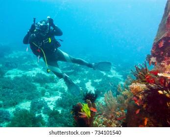 diving camera-man, underwater Philippines