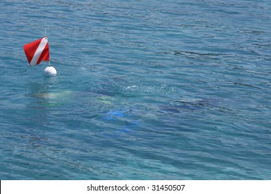 Diving flag floating above scuba divers just below the surface