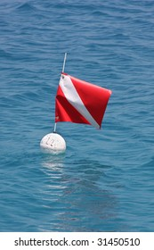 Diving flag floating on a buoy above scuba divers.