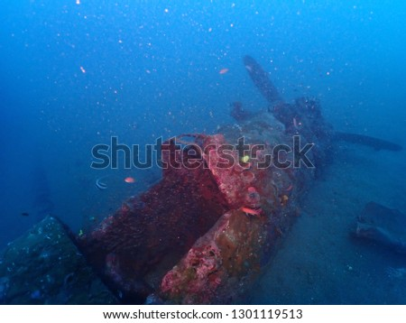 Diving plane wreck called