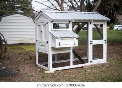 DIY chicken coop for small backyard