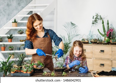 DIY florarium. Home gardening. Mother and daughter enjoying planting succulents, having fun, smiling.