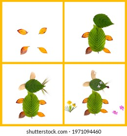 DIY leaf craft, various colorful dead leaves
