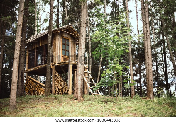 Diy Small Majestic Wood House Forest Buildings Landmarks Stock Image