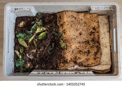 A DIY worm farm composting bin in an apartment