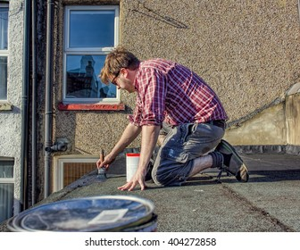 DIY. Young Homeowner Sealing Roof, Home Maintenance Improvement