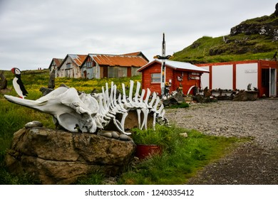 Djupivogur, Iceland - June 24, 2014: typical house or cabin in Iceland with interesting exhibition