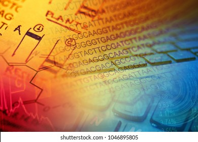 DNA data. Science concept.