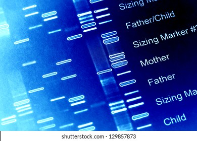 DNA fingerprint data on a paper. Macro image.