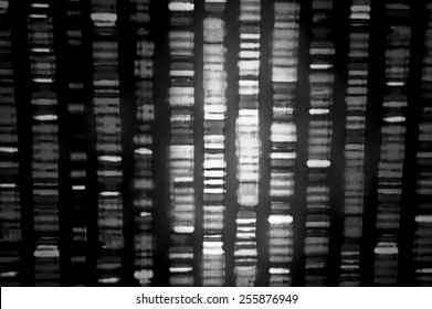 DNA sequence in black and white