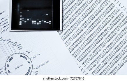 DNA sequence, electrophoresis photo and a restriction map