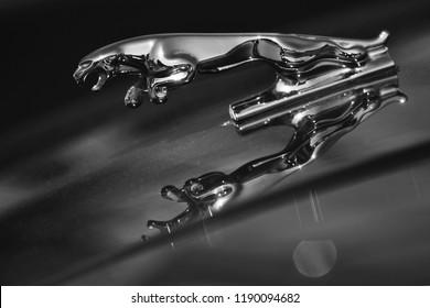 DNIPRO, UKRAINE - SEPTEMBER 22, 2018: black and white chrome Jaguar logo on the hood of the car Jaguar XJS in a car show. Statuette of jaguar in a jump.