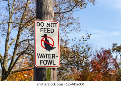 A Do not feed waterfowl sign in a city park.