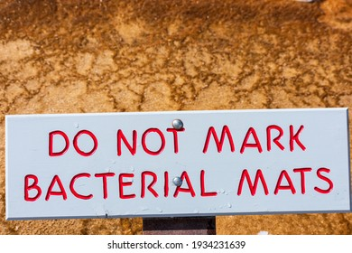 Do Not Mark Bacterial Mats sign in Yellowstone National Park reminds tourists not to deface the environment. Background orange thermophilic bacteria mats