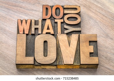 do what you love - inspiration and motivation  concept - text in vintage letterpress wood type