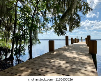 Dock in Florida on a hot summer day.