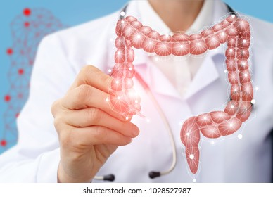 Doctor draws the structure of the colon on a virtual screen.