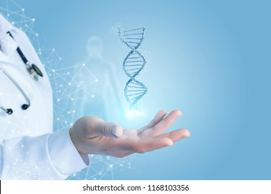 Doctor Hand showing dna . Concept of research and testing.