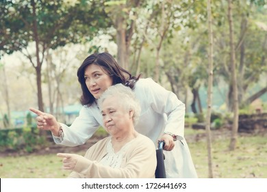 Doctor help and care Asian senior woman lady sitting on wheelchair in park.