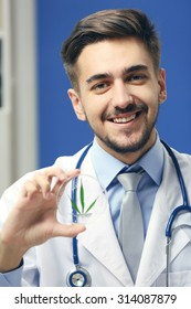 Doctor holding green cannabis leaf close up