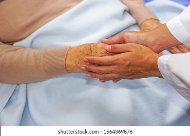 The doctor holding the hand of a patient, Asian senior or elderly old lady woman and encouraging in hospital or clinic. Comforting, healthcare and empathy concept.