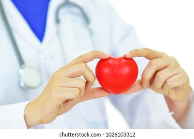 Doctor holding heart in hands, heart care concept