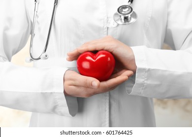 Doctor holding plastic heart in hands, closeup