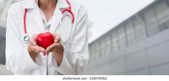 Doctor holding a red heart at hospital office. Medical health care and doctor staff service concept.