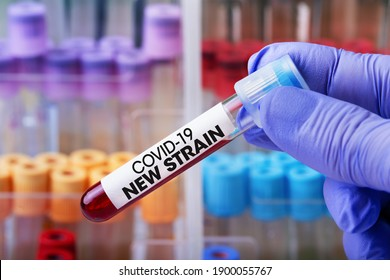 Doctor in the lab holding a tube of blood identified with the label Covid-19 New Strain. Laboratory Technician with a blood sample with a new variant of the Coronavirus